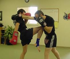 Применение Традиционного Бокса В Муай Тай?