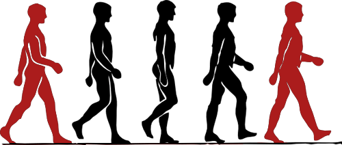 walking positions of body movement