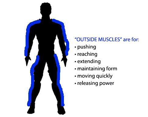 los músculos externos liberan el poder
