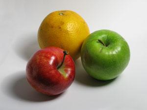 Eine gesunde Boxer Ernährung