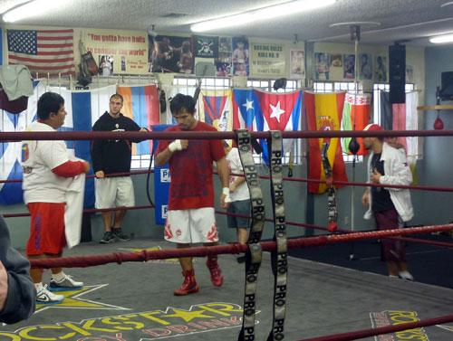 Wildcard Boxing Club - Revisión de Gimnasio