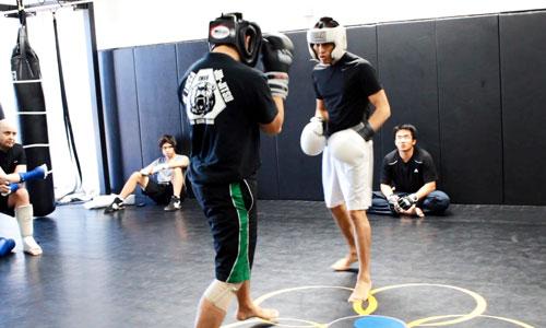 Почему бойцы любых единоборств должны изучать бокс