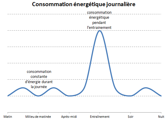 Consommation énergétique journalière boxe