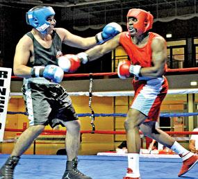 listo para el boxeo amateur