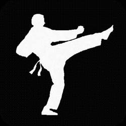 从武术到拳击的转换